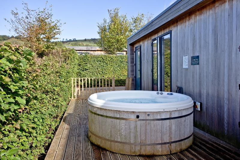 Click here for more about Whileaway Lodge - Strawberryfield Park